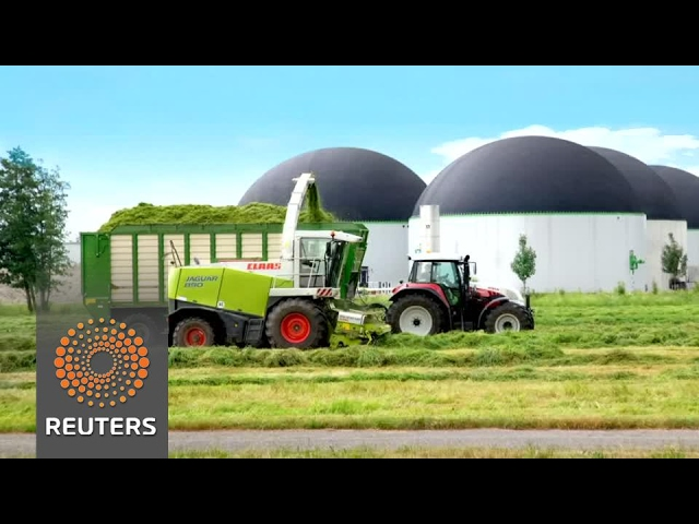 'Super grass' could improve farming, help fracking alternative