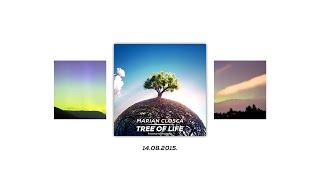 Marian Closca - Gravity