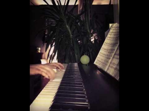 Mozart  Sonata kv 332 piano cover