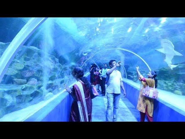 VGP Marine Kingdom - India's First Ever Under Water Tunnel Aquarium @ ECR - Chennai #1