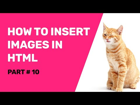How To Add - Insert Image In Html From A Folder Using Notepad Step By Step