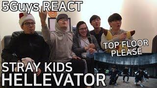 DOPE DROP Stray Kids Hellevator 5Guys MV REACT
