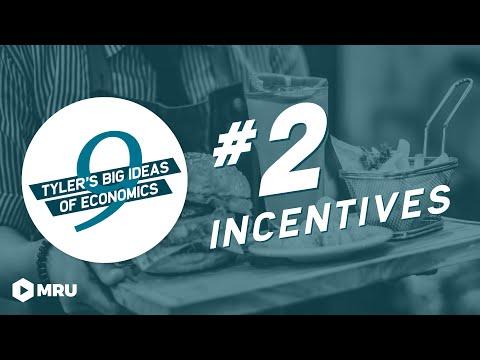 Tyler Cowen's Idea #2: Incentives Matter