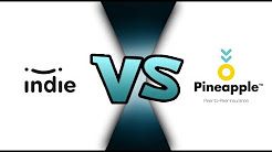 Indie Fin Vs Pineapple  Battle of the Insurance StartUps