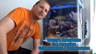 Zee aquarium schoonmaken onderhouden