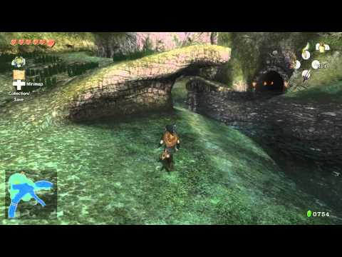 Zelda Twilight Princess HD Why Fish Point Of Fishing Roll Goal How To