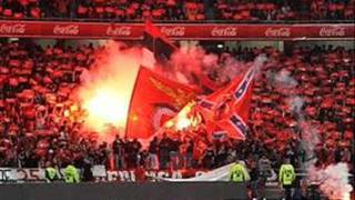 Repeat youtube video Benfica- Canticos NN Boys.wmv
