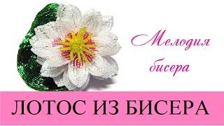 Лотос из бисера. Мастер-класс. Часть 1 - Цветок / Beaded Lotus(Посмотрев это видео, Вы научитесь плести лотос из бисера / How to make beaded lotus Часть 2 - Лист https://www.youtube.com/watch?v=5eY_6mMmvk..., 2016-03-08T07:00:36.000Z)