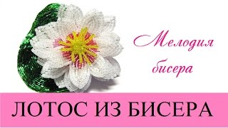 ЛОТОС из БИСЕРА - мастер-класс, урок 1 - Цветок