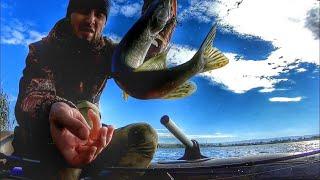 За Хищником Щука Рыбалка на Озере