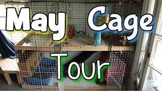 May Rabbit Cage Tour 2015