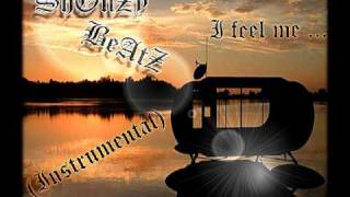 Lil Wayne - I feel me Instrumental 2010 made by ShonzY BeatZ (no samples all played)
