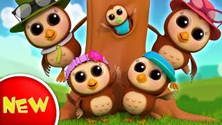 Owl Finger Family | Nursery Rhymes | Kids Songs For Children | Baby Rhymes by Farmees