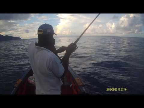 Fishing For Big Jack In Dominica