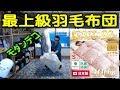 モダンデコ 最上級羽毛布団 400dp以上 開封式 の動画、YouTube動画。