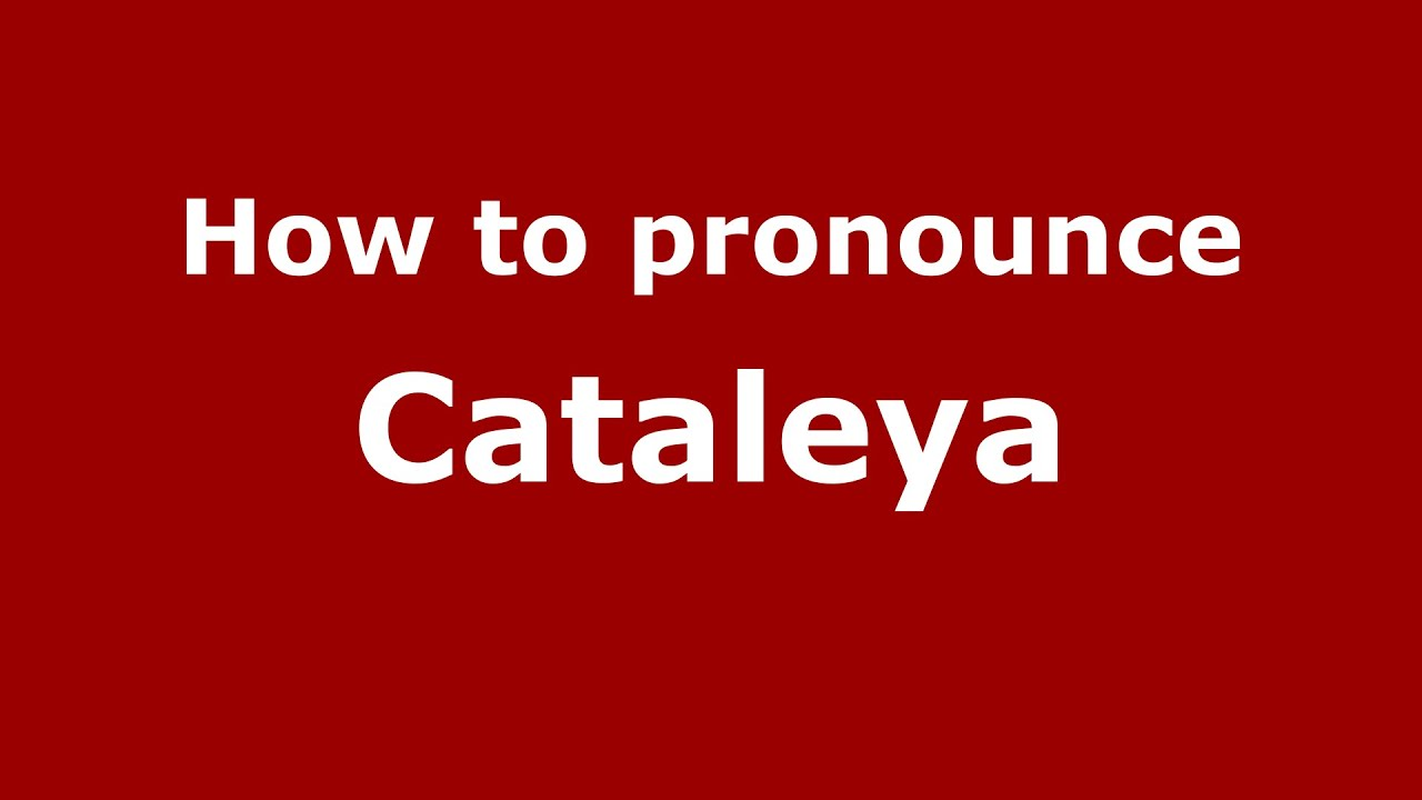 Cataleya Name Meaning