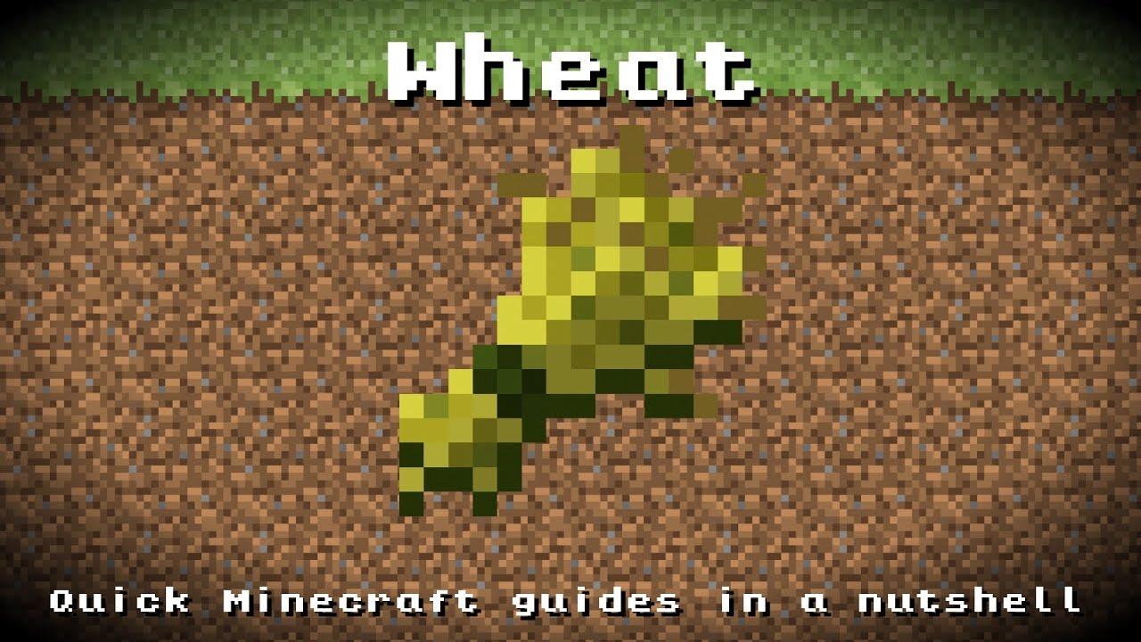 уборка пшеницы в майнкрафте друга #3