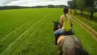 Paysage vosgien :) Balade à cheval