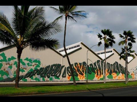 Nani Kapālama - Advancing Native Hawaiian culture through art & design