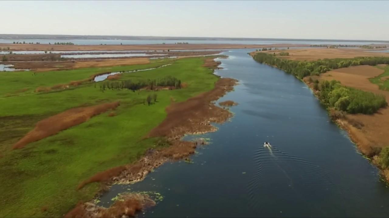 Неймовірна краса Нижньодніпровських плавнів (ВІДЕО)