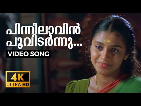 Pinnilavin Lyrics - Veendum Chila Veettu Karyangal Malayalam Movie Songs Lyrics