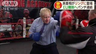 """英首相がスパーリング """"EU離脱難航""""ムードをKOか(19/11/20)"""