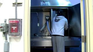 the milking and pasteurization process