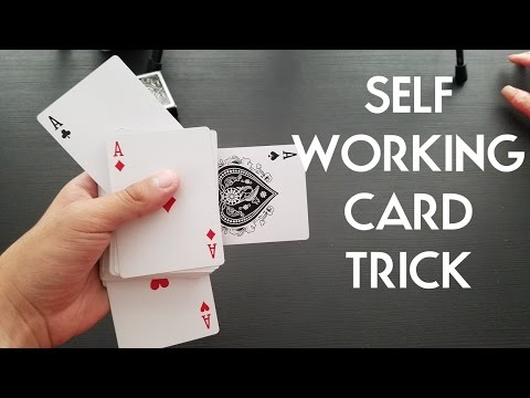 Crazy Self Working Easy Card Trick For Beginners And Experts Pigcake Tutorial