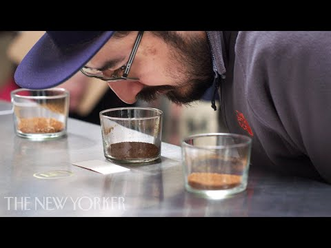 Inside the World of High-End Coffee | Annals of Obsession | The New Yorker
