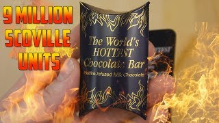 Worlds Hottest Chocolate Bar Challenge | Gingerbread House Building FAIL | What!? What!?
