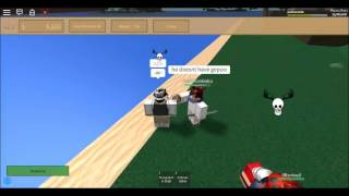 ROBLOX One Piece Age of Pirates Ope proof