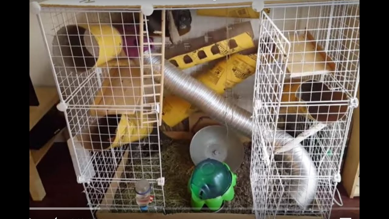 DIY customizable chinchilla/animal cage