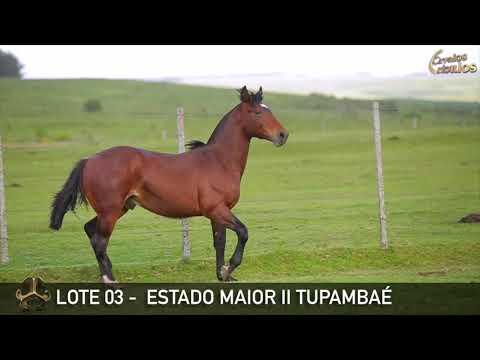 LOTE 03   ESTADO MAIOR II TUPAMBAÉ