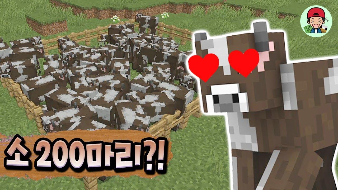 야생에 존재하는 소들 싹 다 잡아버리기ㅋㅋ 동물농장 가즈앗! _ 마인크래프트