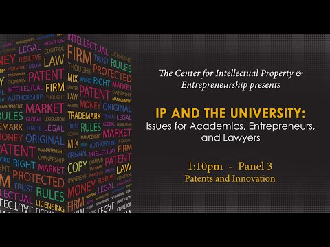 Panel 3 - Patents and Innovation