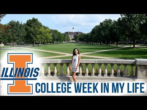 Week in my Life // University of Illinois at Urbana-Champaign