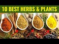 Top 10 Best Medicinal Herbs - For Health & Vitality