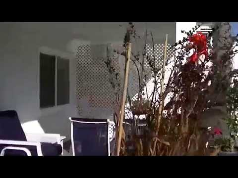 4500 Seashore Drive, Newport Beach, California - Vacation Home Rental