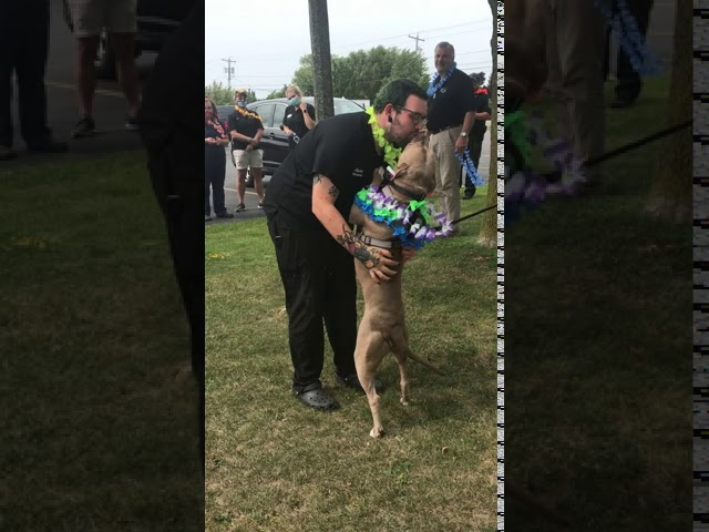 Animal shelter celebrates dog going home after 500 days