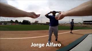 Spring Training Baseball Autographs