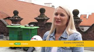 Plzeň v kostce (23.8.-29.8.2021)