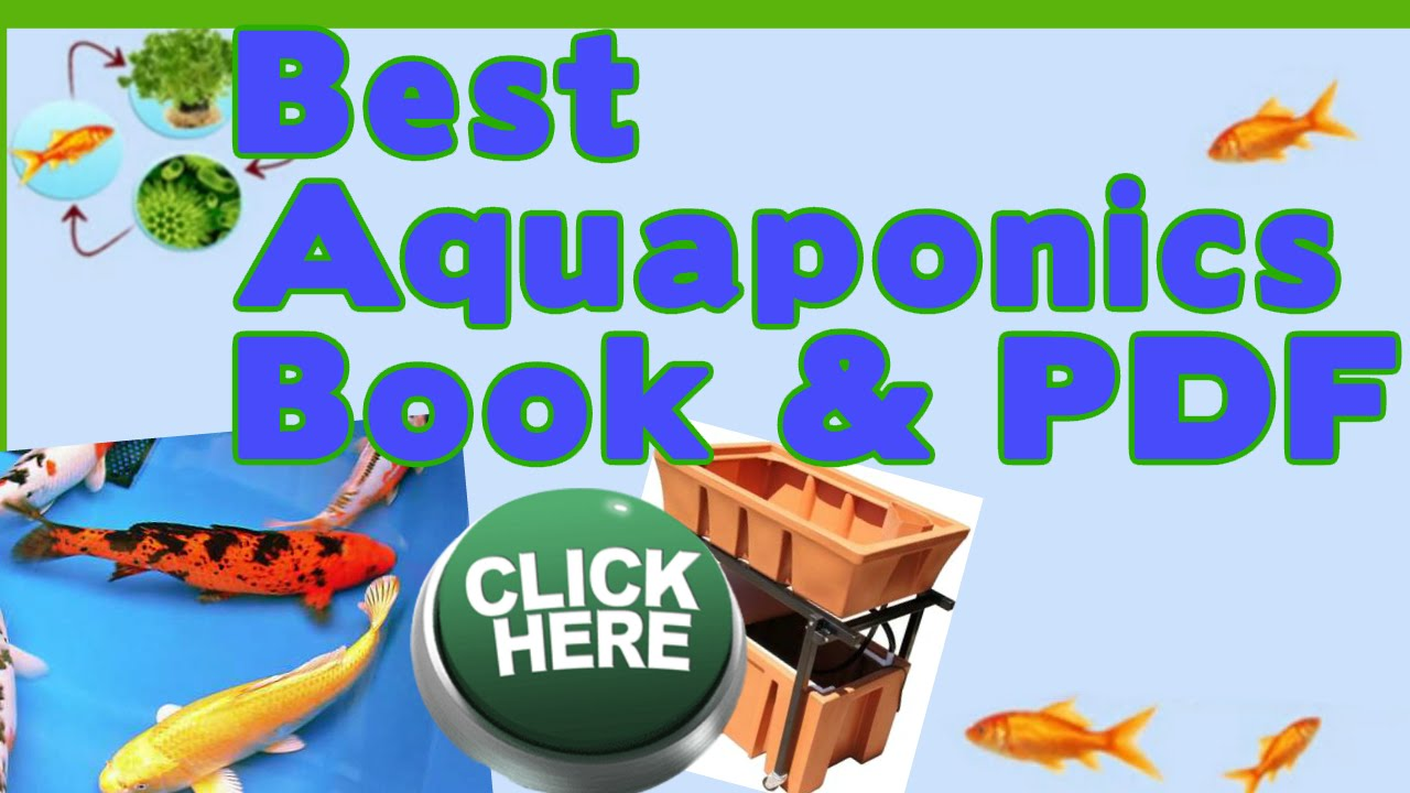 Aquaponics Books Best How To Diy Aquaponics Pdf Guide