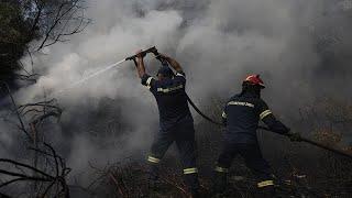 """AOÛT 2019: Grèce : l'incendie sur l'île d'Eubée """"contenu"""""""