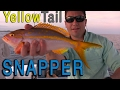 """Yellowtail Snapper Fishing """"Tips and Techniques"""""""