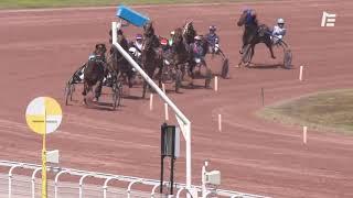 Vidéo de la course PMU PRIX DE PICPUS