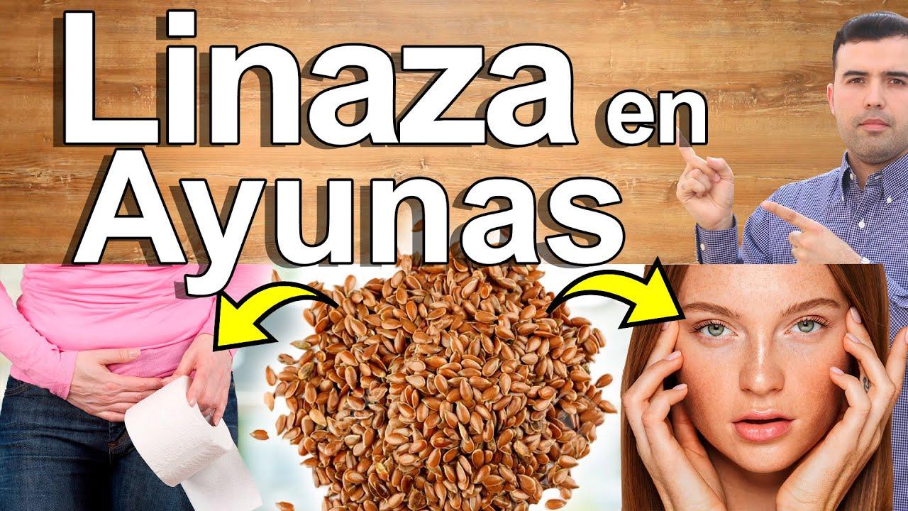 Linaza En Ayunas - Para Qué Sirve? - Beneficios Del Aceite De Lino Para Tu Salud - Semilla De Oro