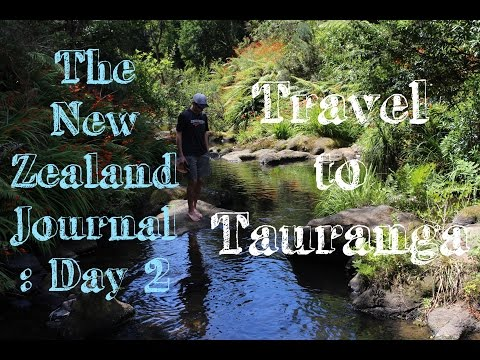 The New Zealand Journal: Day 2 - Travel to Tauranga