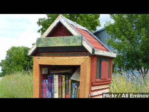 Boy's Front-Yard Library Shut Down By City Government