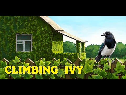 Climbing Ivy  For Pc - Download For Windows 7,10 and Mac