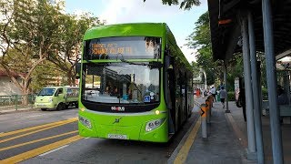 Volvo B5L Hybrid MCV eVoRa - SG3029L on Service 59 | New Diesel Hybrid Bus!